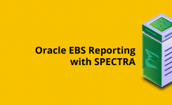 Simplify and Speed-Up Oracle EBS Reporting with RL SPECTRA